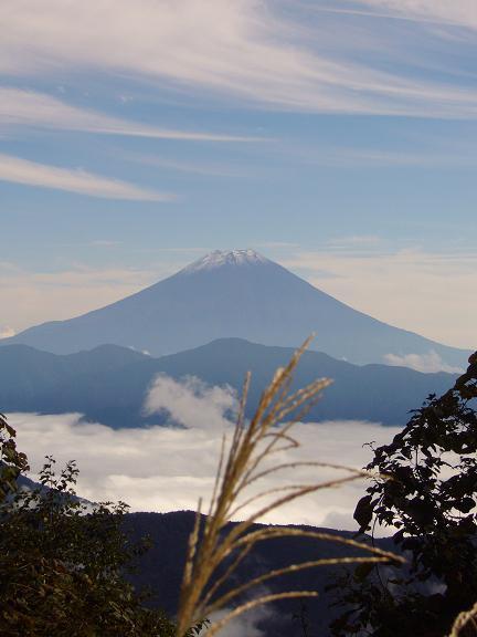 25ススキと富士山.JPG